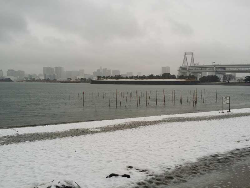 レインボーブリッジ方面の雪